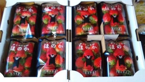 イチゴ ふるさと納税