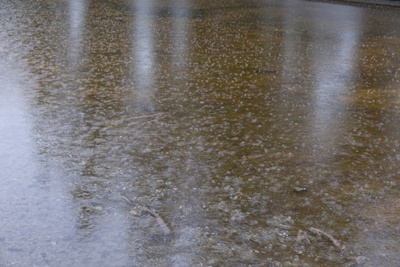 大雨 氾濫